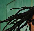 dreadlocks 2